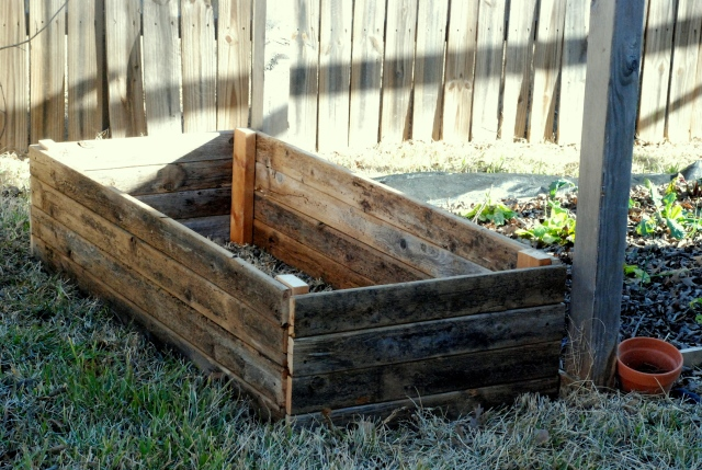 New garden bed